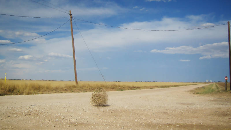 This image has an empty alt attribute; its file name is Tumbleweeds.jpg